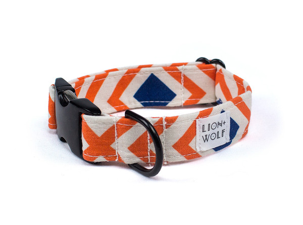 Creamsicle dog collar 1e63716a 24a4 4abb 9514 a830bc734d9a