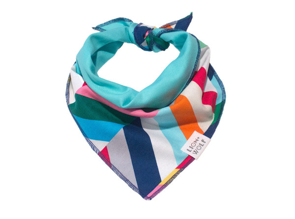 Technicolor dog bandana tied
