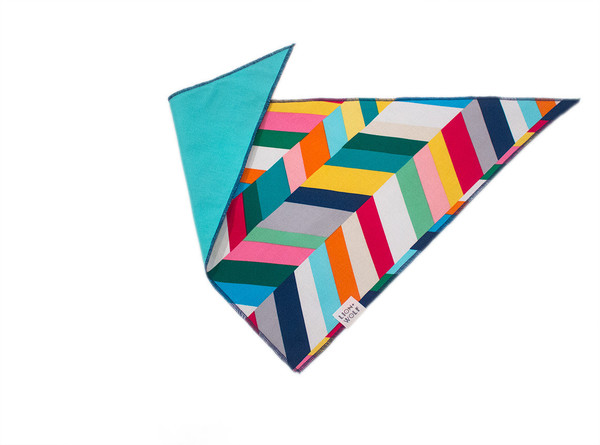 Technicolor dog bandana reverse