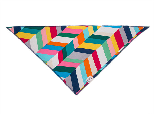 Technicolor dog bandana