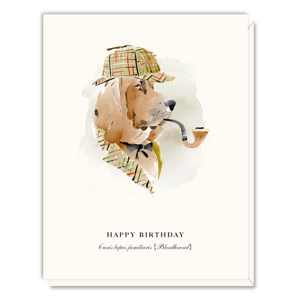 A048 bloodhound