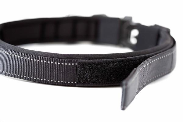 Black sports collar 3