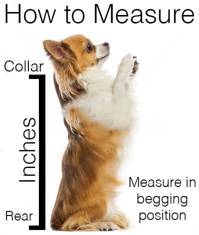 How to measure 0ba70cc4 7b6f 4692 af9d 468475602abf 1024x1024