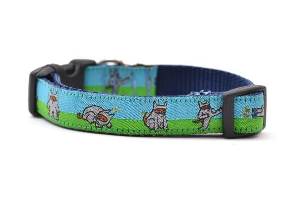 Shawnimal blue green ninja dog xs collar 800x