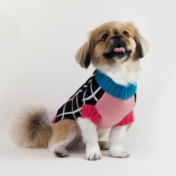 Dog sweater grid bauhound 1024x1024