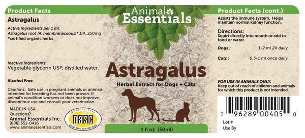 Astragalus back