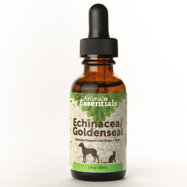 Echinacea goldenseal supplement