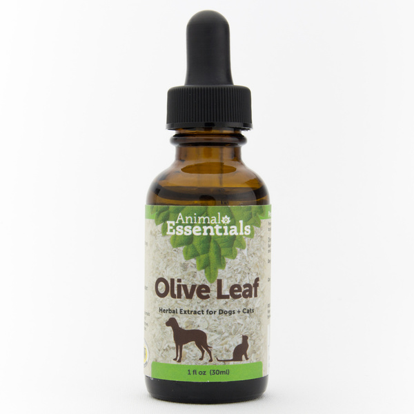 Olive leaf supplement