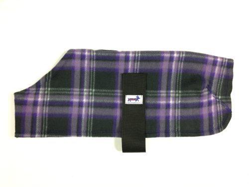 Purple splash 500x375