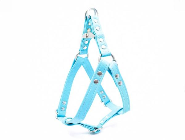 Turquoise harness 1 sm 800x