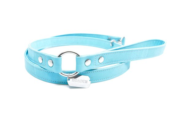 Turquoise cork dog leash x 2048x