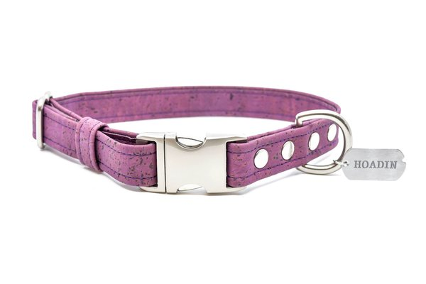 Purple cork dog collar sr. xjpg 1600x