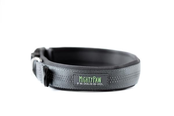 25 grey padded dog collar