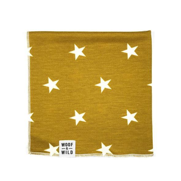 Lucky square dog bandana 590x