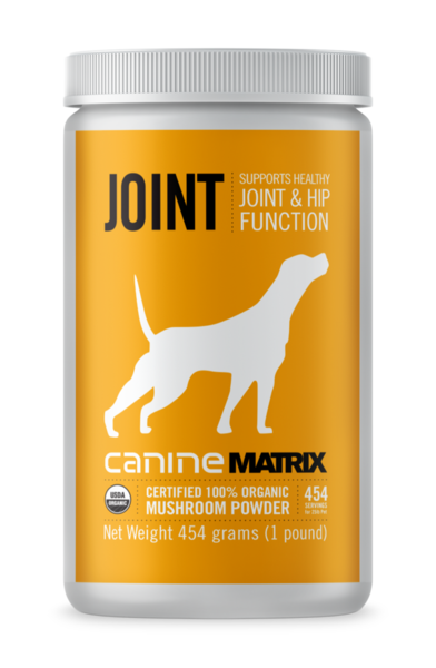 Caninejoint454gfront 600x