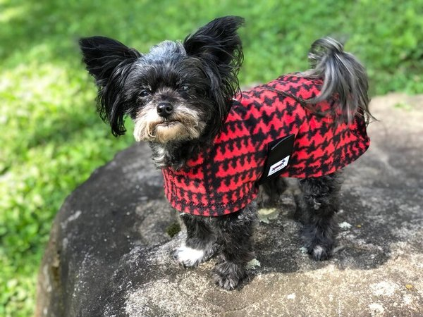 Red houndstooth fleece coat